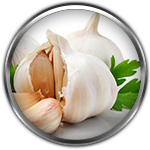 garlic ingredient definition