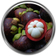 Mangosteen Ingredient Definition